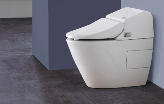 Washlet Toilet Handsfree with Remote Control